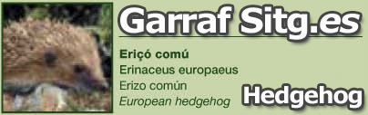 Garraf Natural Part Flora and Animals